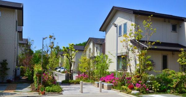 沖縄でZEH住宅を購入するメリット